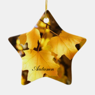 Star Ornaments Holiday Yellow Autumn gifts nature