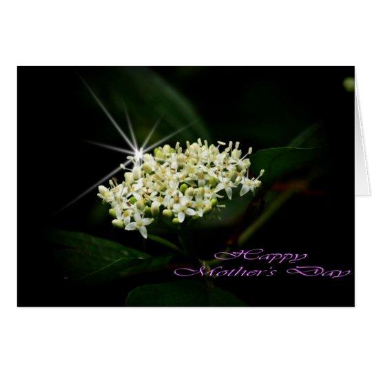 Star queen card