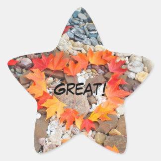 Star Shape stickers GREAT! Heart Leaves seals