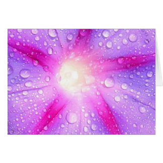 Star Shaped Morning Glory With Glistening Water Card