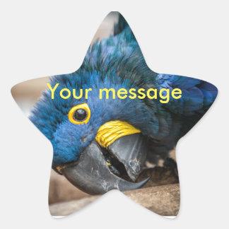 Star sticker cute blue Hyacinth Macaw parrot