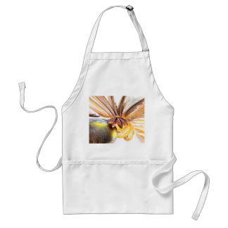 Star Struck Abstract Aprons