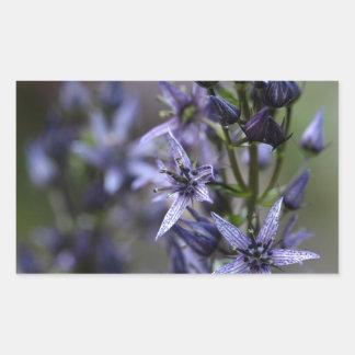 Star swertia (Swertia perennis) Rectangular Sticker