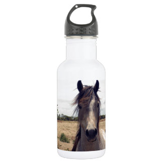 Star_The_Arab_Horse,_ Water Bottle