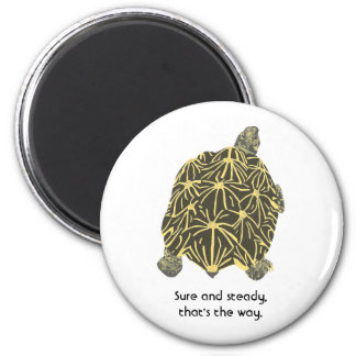 Star tortoise affirmation Sure Steady magnets