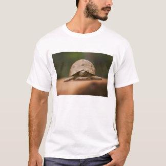 Star tortoise, Perinet Reserve, Madagascar T-Shirt