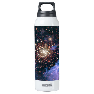 Starburst Clusters 16 Oz Insulated SIGG Thermos Water Bottle