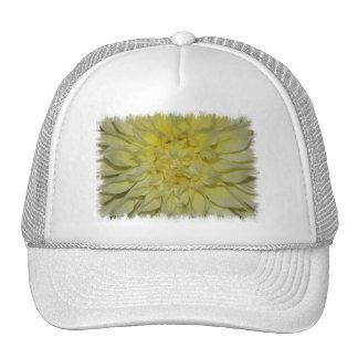 Starburst Dahlia Baseball Hat