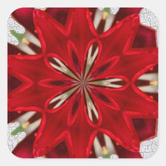 starburst red flower square sticker