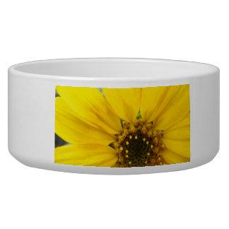 starburst sunflower bowl