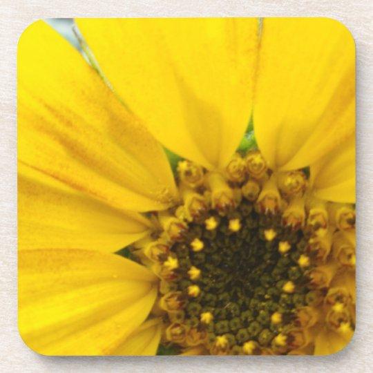Starburst Sunflower Drink Coaster