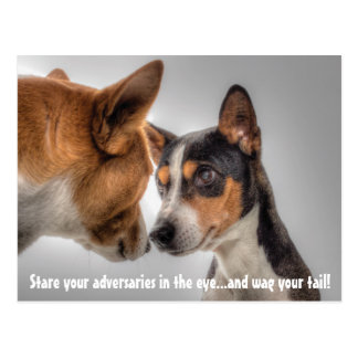Stare Down Your Adversaries & Wag Dog Postcard