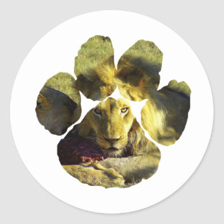 Stare of A Lion Footprint Classic Round Sticker