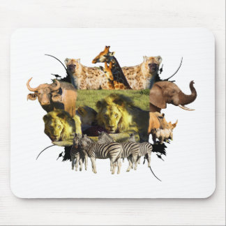 Stare of A Lion Wildlife Frame Mouse Pad