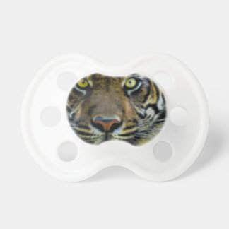 Stared Down By A Tiger Pacifier