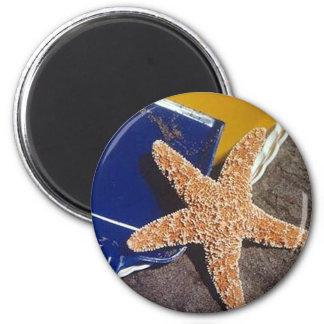 starfish 2 inch round magnet