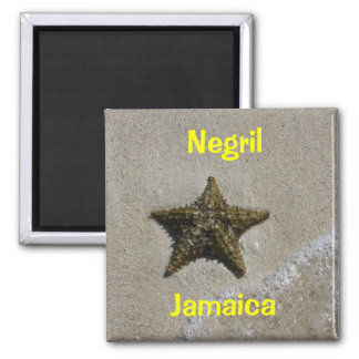 Starfish 2 Inch Square Magnet