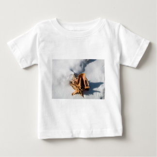 Starfish and Conch Shell Baby T-Shirt