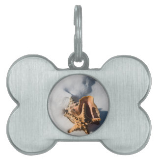 Starfish and Conch Shell Pet Name Tags