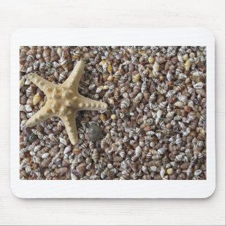 Starfish and seashells mouse pads