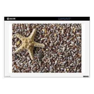 Starfish and seashells laptop skin