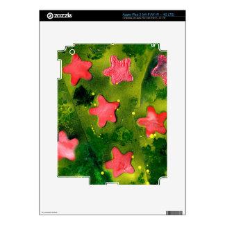 STARFISH ~ (Aquatic Life design) ~ iPad 3 Decal