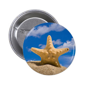 starfish buttons