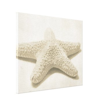 Beach Themed Starfish Canvas Print