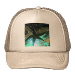 Starfish CB Hats