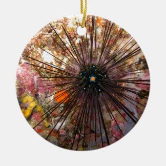 Starfish Ceramic Ornament