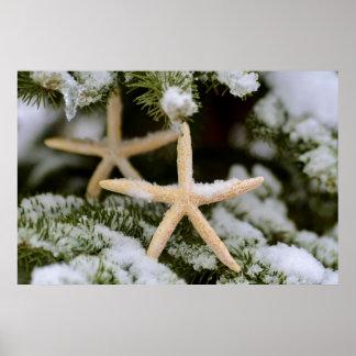 Starfish Christmas Poster