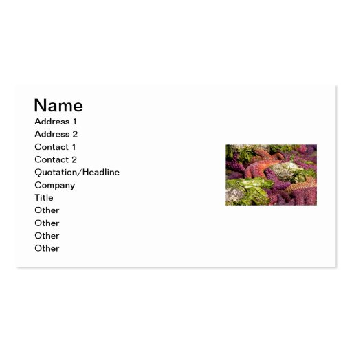 Starfish Closeup Photo Double-Sided Standard Business Cards (Pack Of 100)