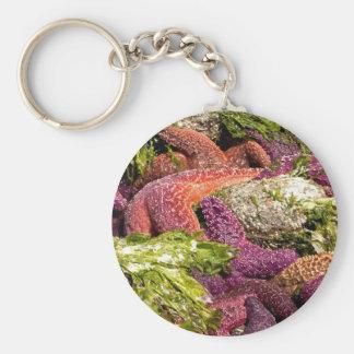 Starfish Closeup Photo Keychain