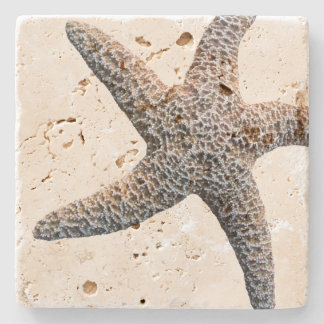 Starfish Drink Coasters Stone