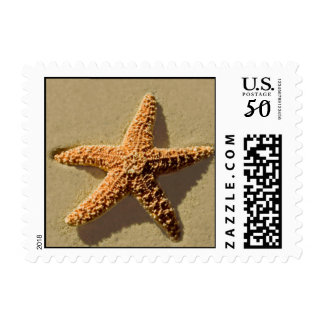 Starfish Event Theme Wedding RSVP Save The Date Postage