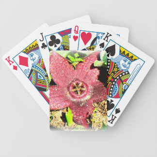 Starfish Flower - Purple Cactus/Succulent Flower Bicycle Playing Cards