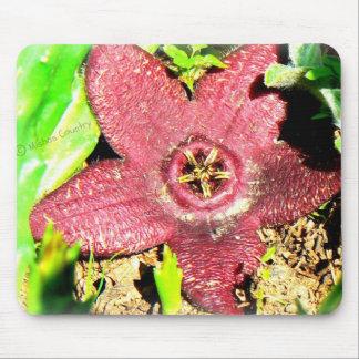 Starfish Flower - Purple Cactus/Succulent Flower Mouse Pad