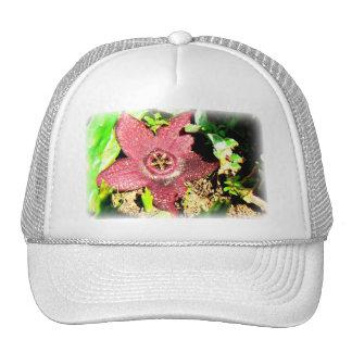 Starfish Flower - Purple Cactus/Succulent Flower Trucker Hat