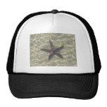 Starfish Hats
