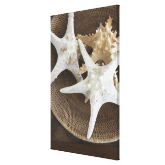 Starfish in a basket canvas print