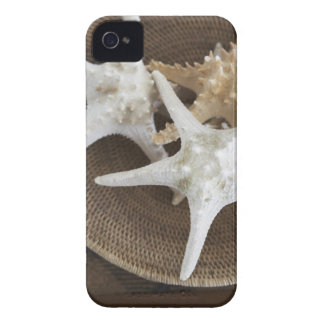 Starfish in a basket iPhone 4 case
