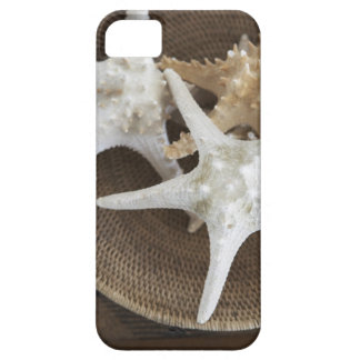 Starfish in a basket iPhone SE/5/5s case