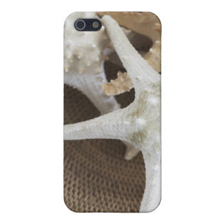 Starfish in a basket iPhone SE/5/5s cover