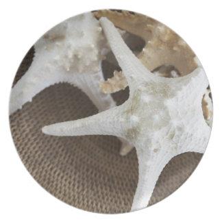 Starfish in a basket melamine plate