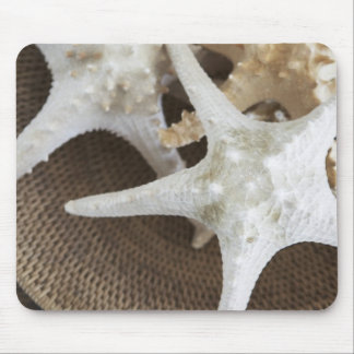 Starfish in a basket mouse pad