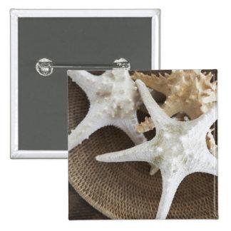 Starfish in a basket pinback button