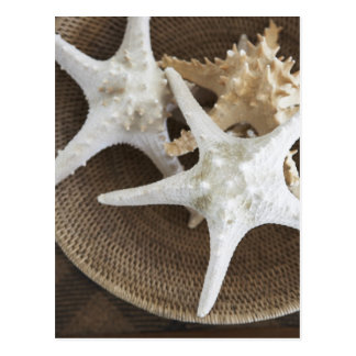 Starfish in a basket postcard