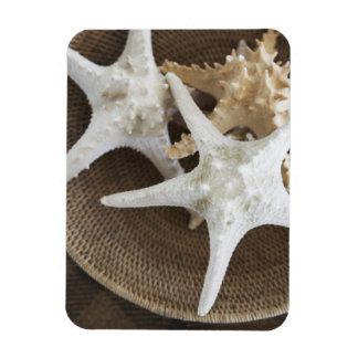 Starfish in a basket rectangular photo magnet