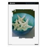 Starfish in bowl iPad 3 decal