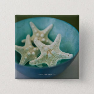 Starfish in bowl pinback button